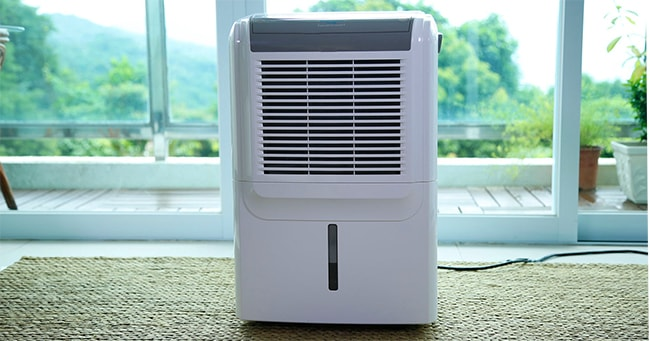 How to Choose a Dehumidifier