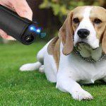 Best Ultrasonic Dog Repeller