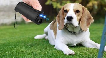 Best Ultrasonic Dog Repeller