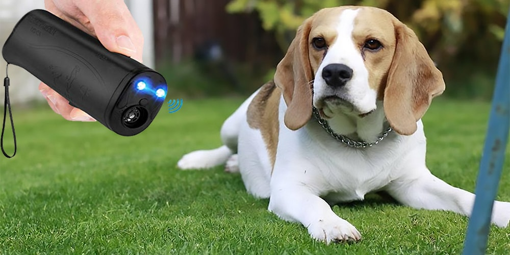 Best Ultrasonic Dog Repeller Reviews