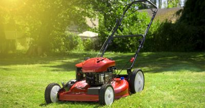 Best Gas Lawn Mowers Reviews 2021 - Top Rated Models & Buying Guide