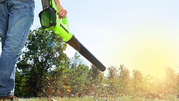 Best Battery Powered Leaf Blowers Reviews