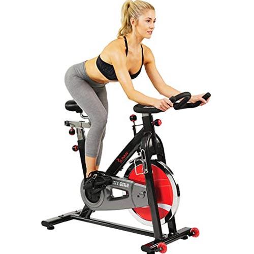 Sunny Health & Fitness 49 Lb Chromed Flywheel